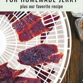 best dehydrators for jerky
