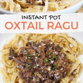 Oxtail Ragu