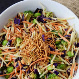 Asian Slaw with Dressing